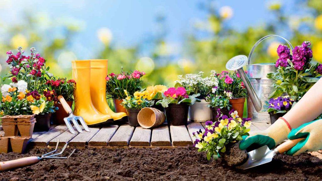 Embellecer las áreas verdes rescata la alegría de la primavera